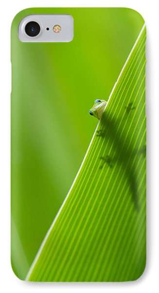 IPhone Case featuring the photograph Peek A Boo Gecko by Christina Lihani