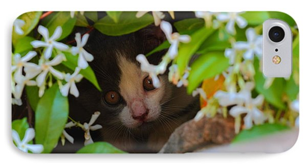 IPhone Case featuring the photograph Peek-a-boo by Richard Patmore