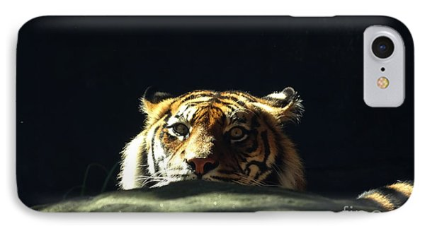 IPhone Case featuring the photograph Peek-a-boo Tiger by Angela DeFrias