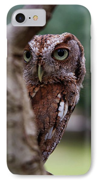 IPhone Case featuring the photograph Peekaboo Pablo by Arthur Dodd