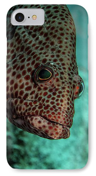 IPhone Case featuring the photograph Peeking Coney by Jean Noren