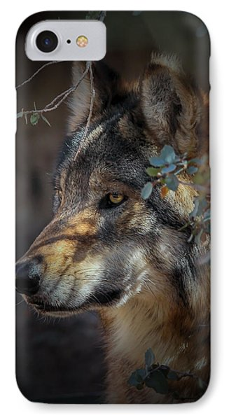 Peeking Out From The Shadows IPhone Case by Elaine Malott