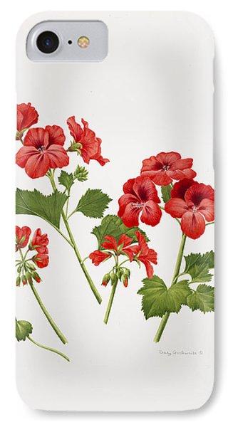 Pelargonium Geranium IPhone Case by Sally Crosthwaite