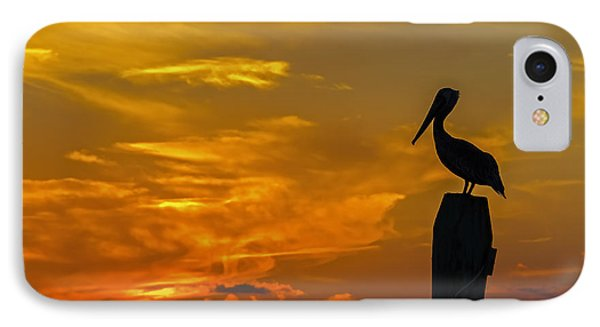 Pelican At Silver Lake Sunset Ocracoke Island IPhone Case