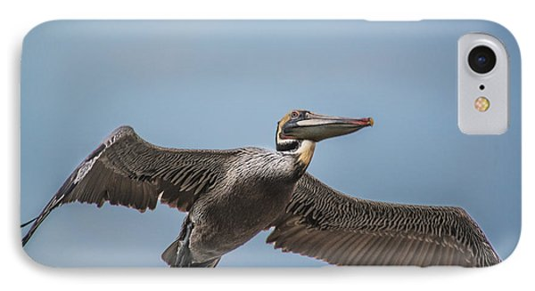 Pelican Briefly IPhone Case by Bill Roberts