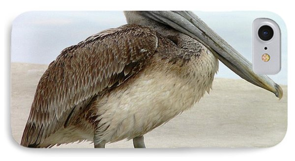 Pelican Close-up Phone Case by Al Powell Photography USA