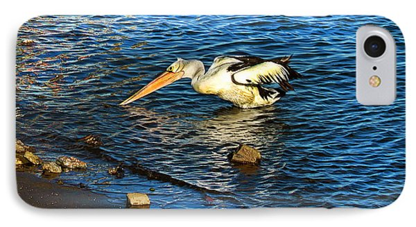 Pelican In Action Phone Case by Susan Vineyard