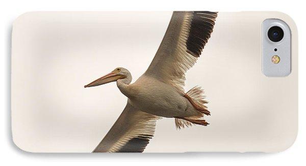 Pelican In Flight IPhone Case by Paul Freidlund
