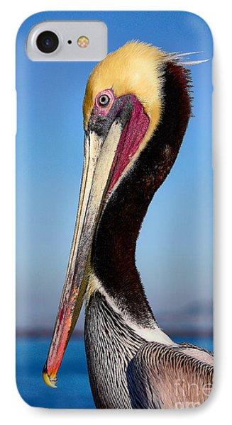 Pelican Looking IPhone Case