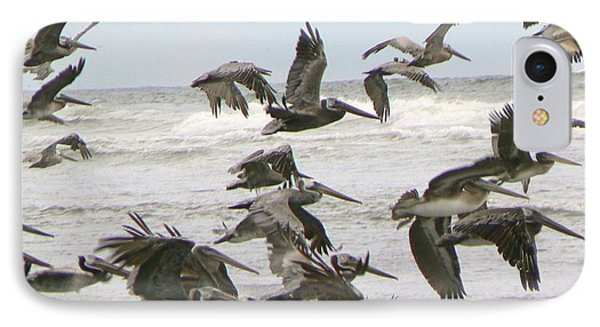 IPhone Case featuring the photograph Pelican Migration  by Pamela Patch