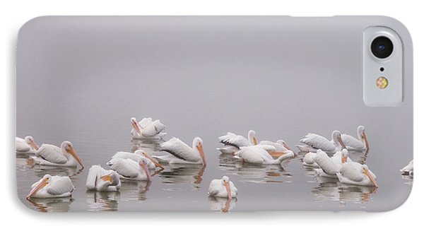 Pelicans On The Lake IPhone Case by Carolyn Dalessandro