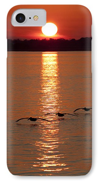 Pelican Sunset Phone Case by Dustin K Ryan
