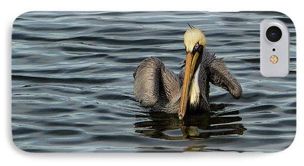 Pelican Wing In A  Twist IPhone Case by Jean Noren