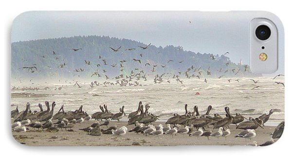 IPhone Case featuring the photograph Pelicans And Gulls by Pamela Patch