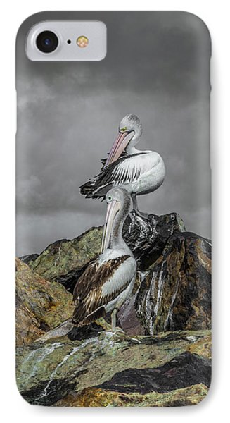 Pelicans On Rocks IPhone Case by Racheal Christian