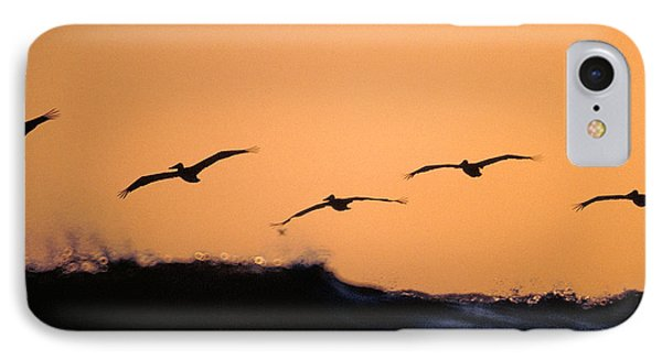 Pelicans Over The Pacific IPhone Case by Michael Mogensen