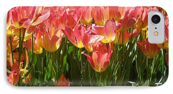 IPhone Case featuring the photograph Pella Tulips Yellow Pink by Peg Toliver