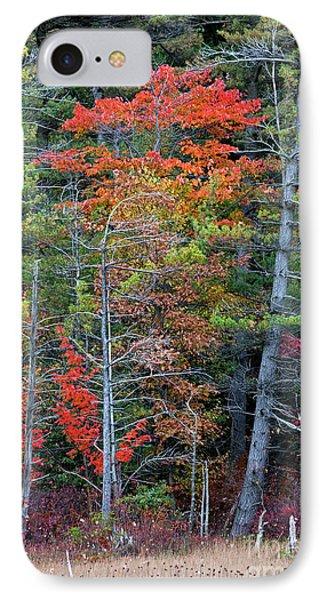 Pennsylvania Laurel Highlands Autumn IPhone Case by John Stephens