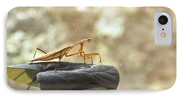 Pensive Mantis Phone Case by Douglas Barnett