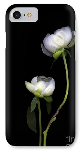 Peonies IPhone Case by Christian Slanec
