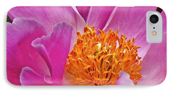Pink Flower Peony Garden Wall Art IPhone Case
