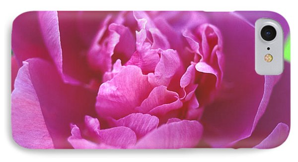 Peony In Pink Phone Case by Kathy Yates