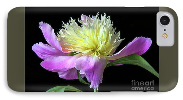 Peony On Black IPhone Case