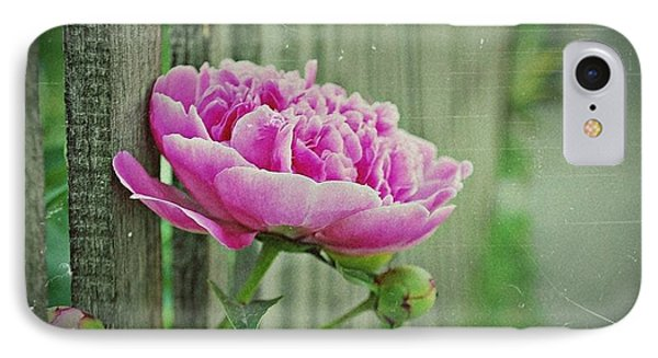 IPhone Case featuring the photograph Peony Time by Marija Djedovic