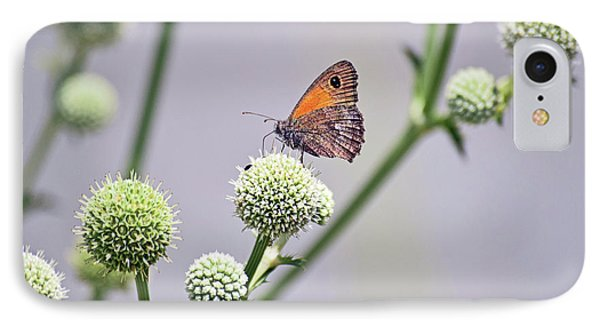 Perched Butterfly No. 255-1 IPhone 7 Case by Sandy Taylor