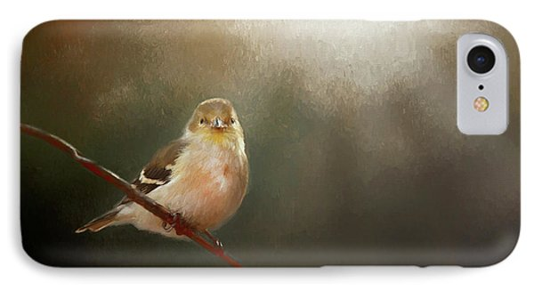 IPhone Case featuring the photograph Perched Goldfinch by Darren Fisher