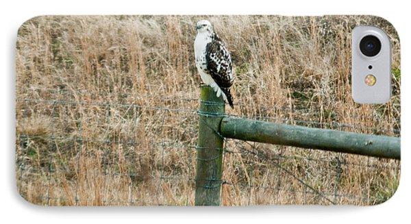 Perched Hawk Phone Case by Douglas Barnett