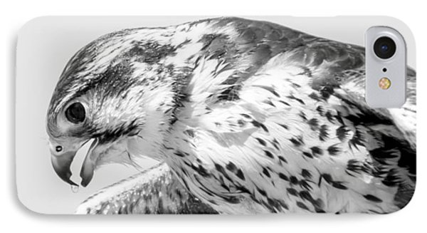 Peregrine Falcon In Black And White IPhone Case