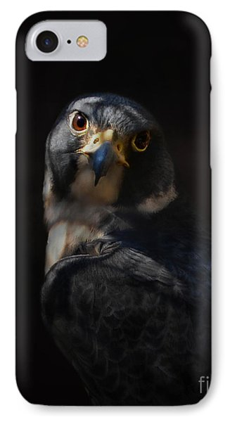 Peregrine Falcon IPhone Case by Kathy Russell