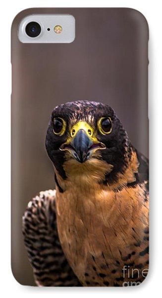 Peregrine Falcon Profile 2 IPhone Case