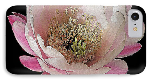 Perfect Pink And White Cactus Flower IPhone Case by Merton Allen