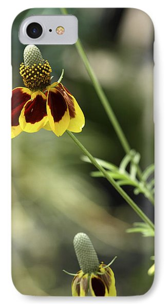 Perky Yellow IPhone Case by Barbara Middleton