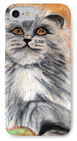 Persian Cat IPhone Case by Angela Murray