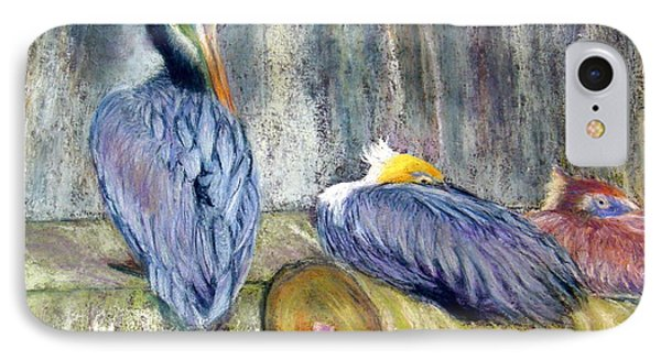 IPhone Case featuring the pastel Peruvian Pelicans Three Pastel by Antonia Citrino