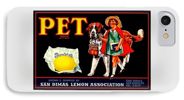 Pet Saint Bernard 1920s California Sunkist Lemons IPhone Case by Peter Gumaer Ogden