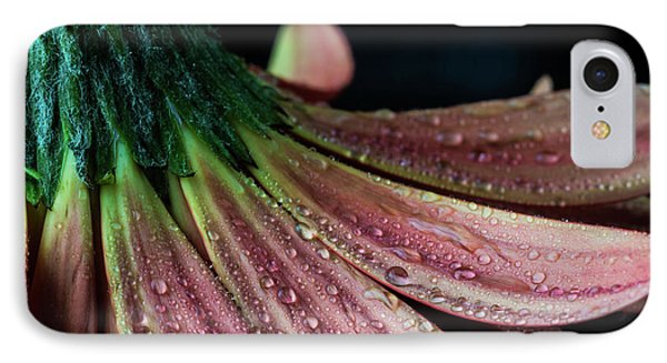 Petal Perfect IPhone Case