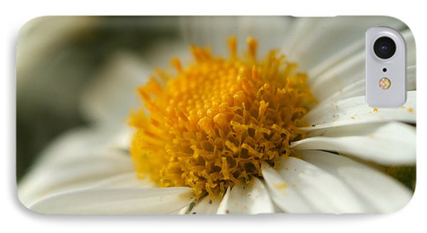 Petals And Pollen IPhone Case by Michael McGowan
