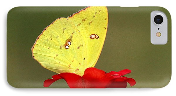 IPhone Case featuring the photograph Petals And Wings by Sheila Brown