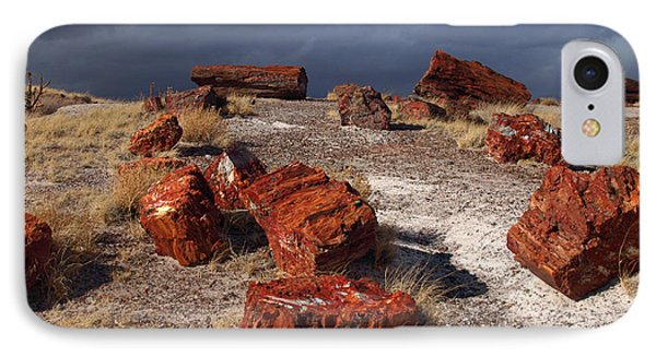 IPhone Case featuring the photograph Petrified Forest National Park by James Peterson