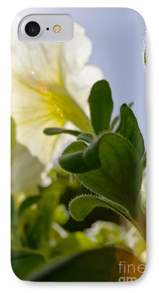 Petunia And Sunflare Phone Case by Ray Laskowitz - Printscapes