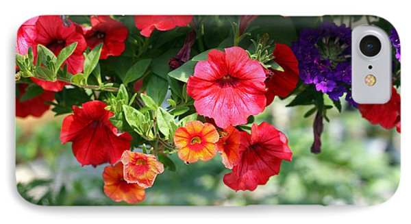 Petunias IPhone Case by Denise Pohl