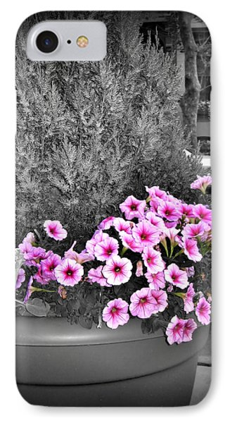 IPhone Case featuring the photograph Petunias In Brooklyn Circa 2006 by Iowan Stone-Flowers