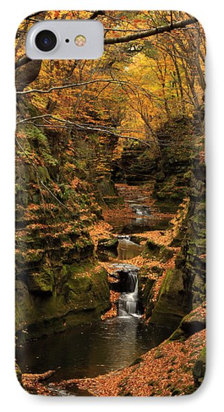 Pewit's Nest - Wisconsin IPhone Case