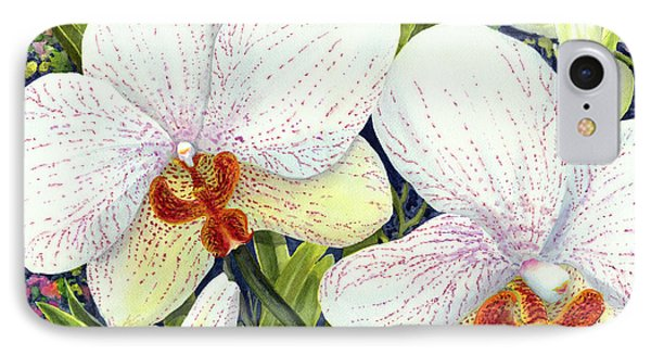 Phalaenopsis IPhone Case by Karen Wright