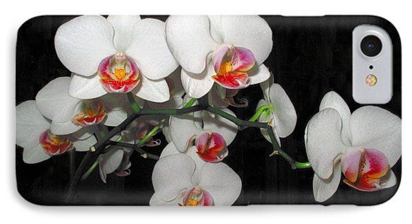 Phalaenopsis Orchids IPhone Case by Joyce Dickens