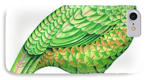 Pheasant IPhone Case by Jane Tattersfield